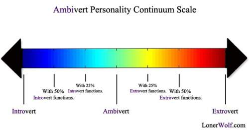 Are You an Ambivert?